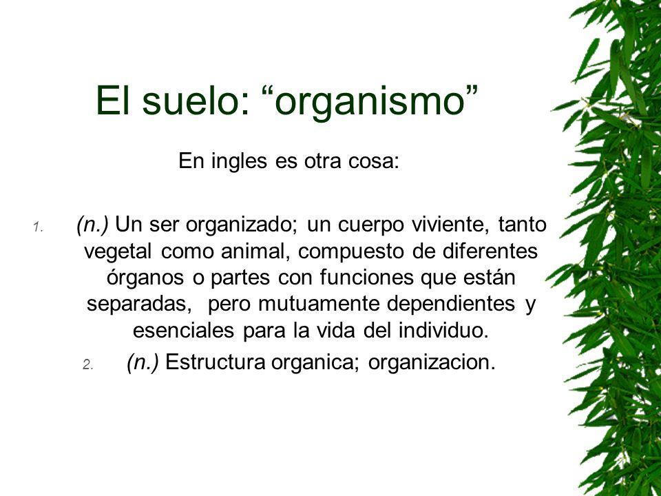 El suelo: organismo En ingles es otra cosa: 1. (n.) Un ser organizado; un cuerpo viviente, tanto vegetal como animal, compuesto de diferentes órganos