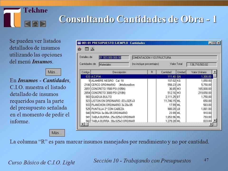 47 Curso Básico de C.I.O. Light Sección 10 - Trabajando con Presupuestos Consultando Cantidades de Obra - 1 Se pueden ver listados detallados de insum