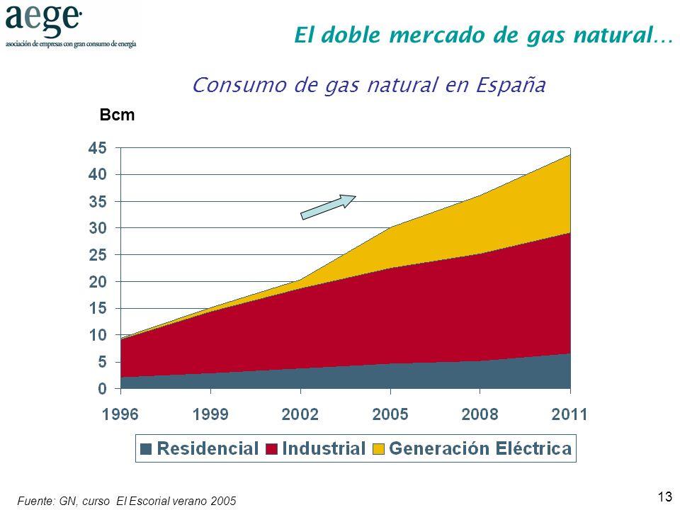 13 Consumo de gas natural en España Fuente: GN, curso El Escorial verano 2005 Bcm El doble mercado de gas natural…