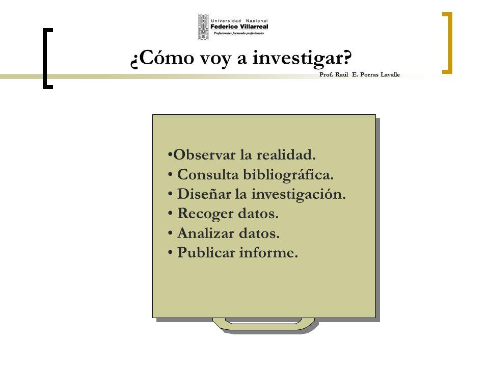 Prof. Raúl E. Porras Lavalle ¿Cómo voy a investigar? Prof. Raúl E. Porras Lavalle Observar la realidad. Consulta bibliográfica. Diseñar la investigaci