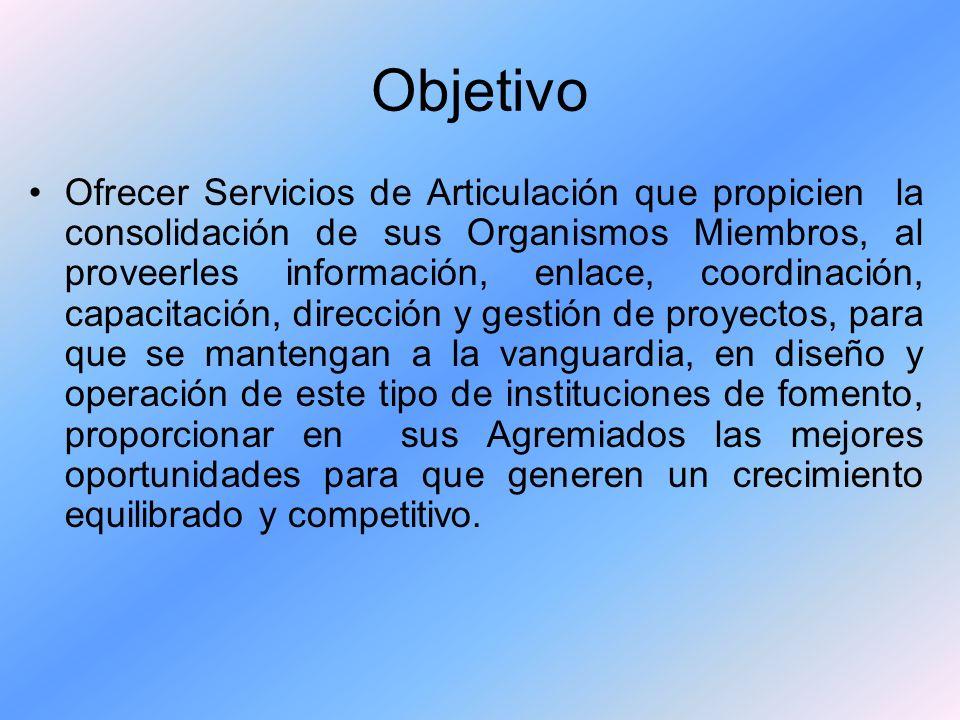 Objetivo Ofrecer Servicios de Articulación que propicien la consolidación de sus Organismos Miembros, al proveerles información, enlace, coordinación,