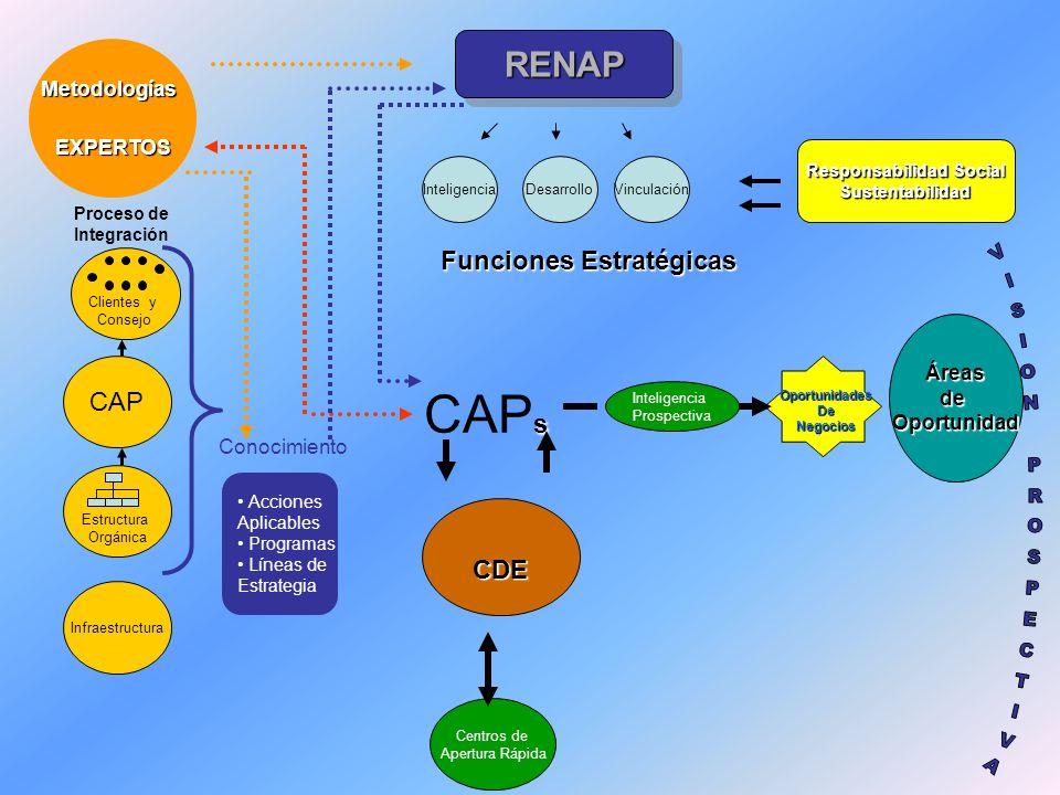 RENAPRENAP Metodologías MetodologíasEXPERTOS Vinculación s CAP s CDE CDE Inteligencia Prospectiva OportunidadesDeNegocios Responsabilidad Social Suste
