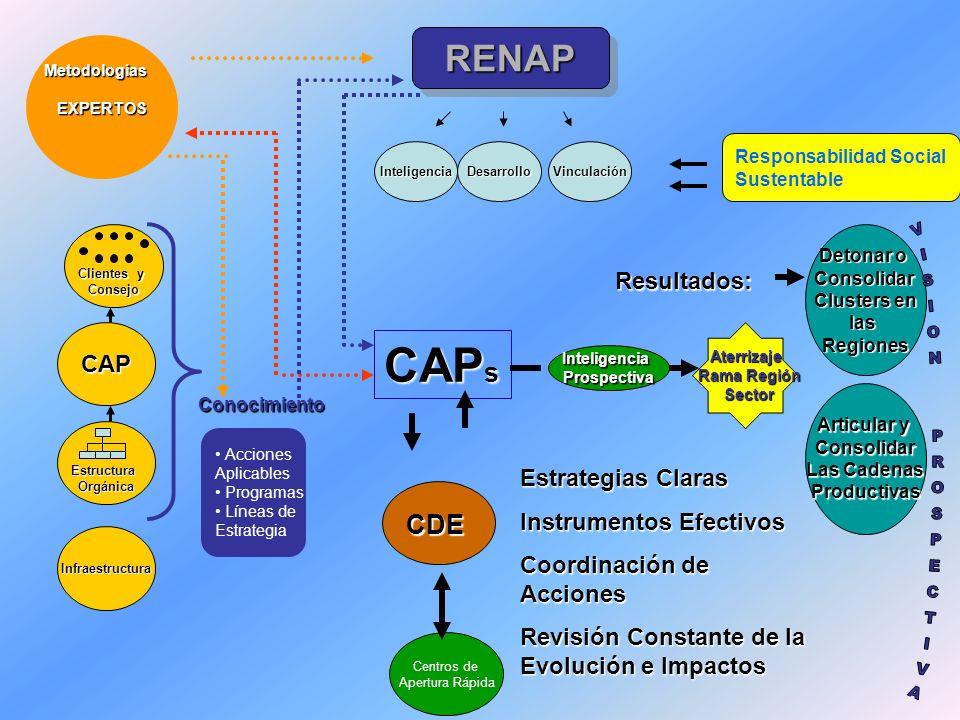 RENAPRENAP MetodologíasEXPERTOS Vinculación CAP s CDE InteligenciaProspectiva Aterrizaje Rama Región Sector Responsabilidad Social Sustentable Conocim