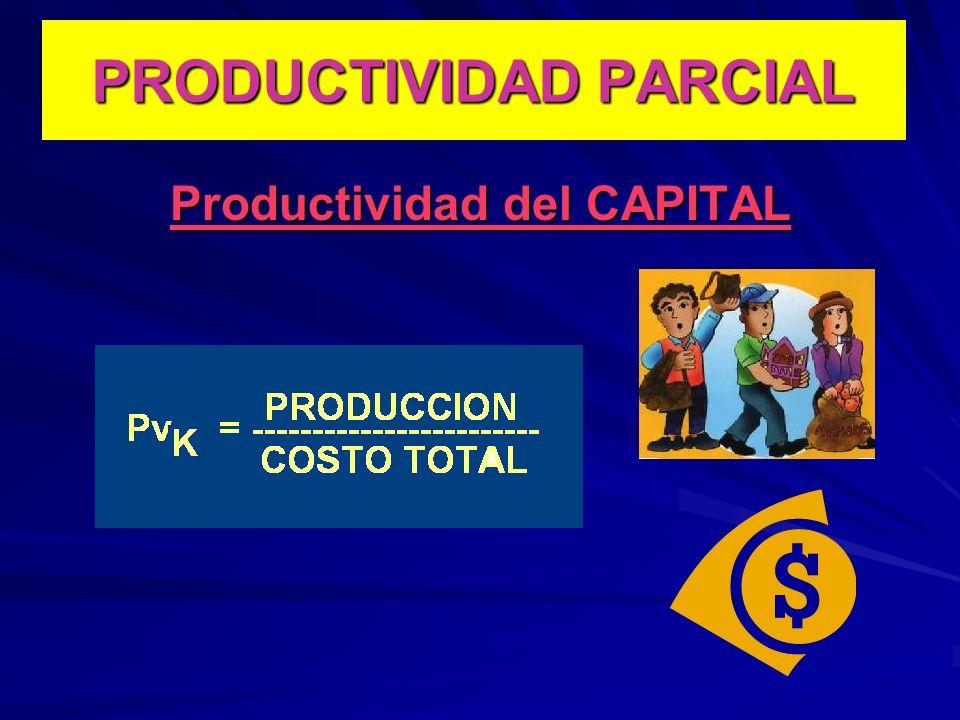 Productividad del CAPITAL PRODUCTIVIDAD PARCIAL