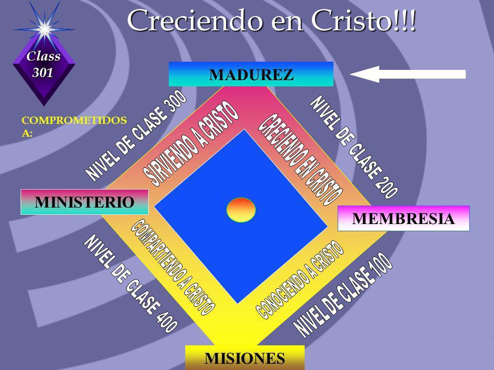Class 301 Acerca De La Responsabilidad Cualquier cosa se levanta o cae según el LIDERAZGO.