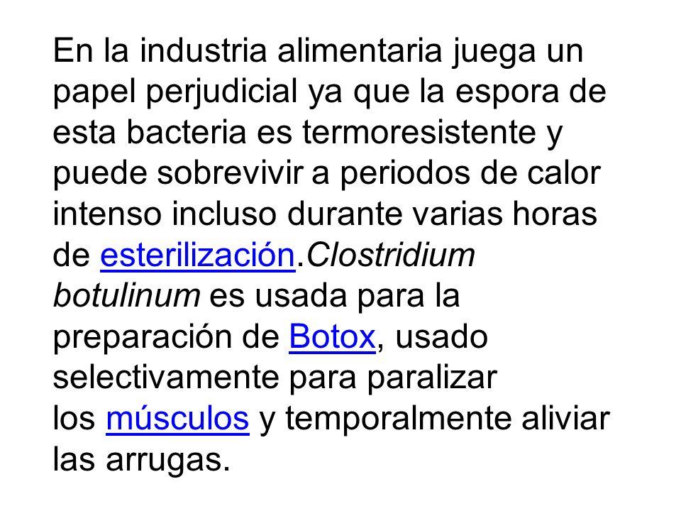 Hay siete tipos de toxinas botulínicas designadas por las letras A hasta la G; sólo los tipos A, B, E y F pueden causar enfermedad (botulismo) en los