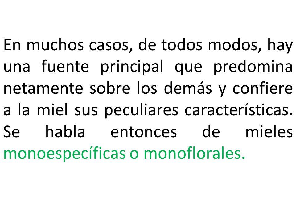 CONTRAINDICACIONES DE LA MIEL * EL USO EXCESIVO EN DIABETICOS.
