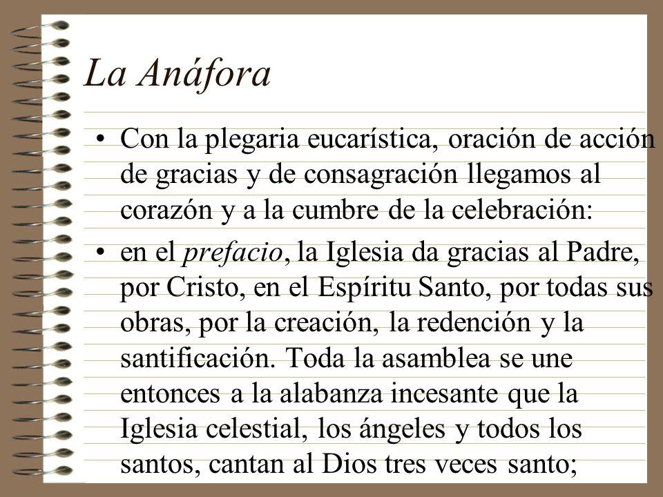 La Anáfora Con la plegaria eucarística, oración de acción de gracias y de consagración llegamos al corazón y a la cumbre de la celebración: en el pref