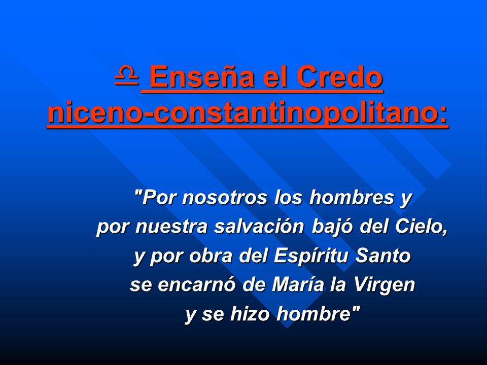 Enseña el Credo niceno-constantinopolitano: Enseña el Credo niceno-constantinopolitano:
