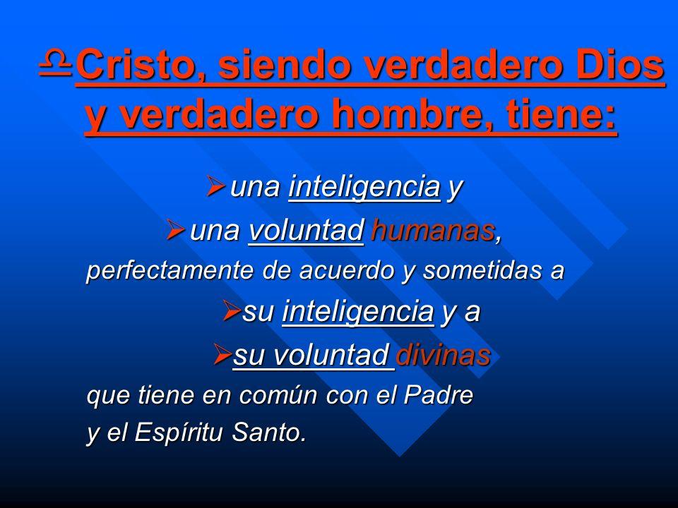 Cristo, siendo verdadero Dios y verdadero hombre, tiene: Cristo, siendo verdadero Dios y verdadero hombre, tiene: una inteligencia y una inteligencia