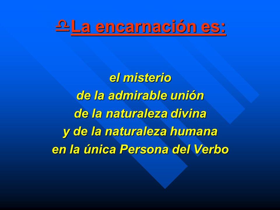 La encarnación es: La encarnación es: el misterio de la admirable unión de la naturaleza divina y de la naturaleza humana en la única Persona del Verb