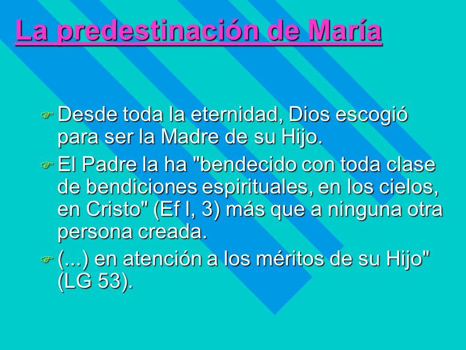 La predestinación de María F Desde toda la eternidad, Dios escogió para ser la Madre de su Hijo. F El Padre la ha