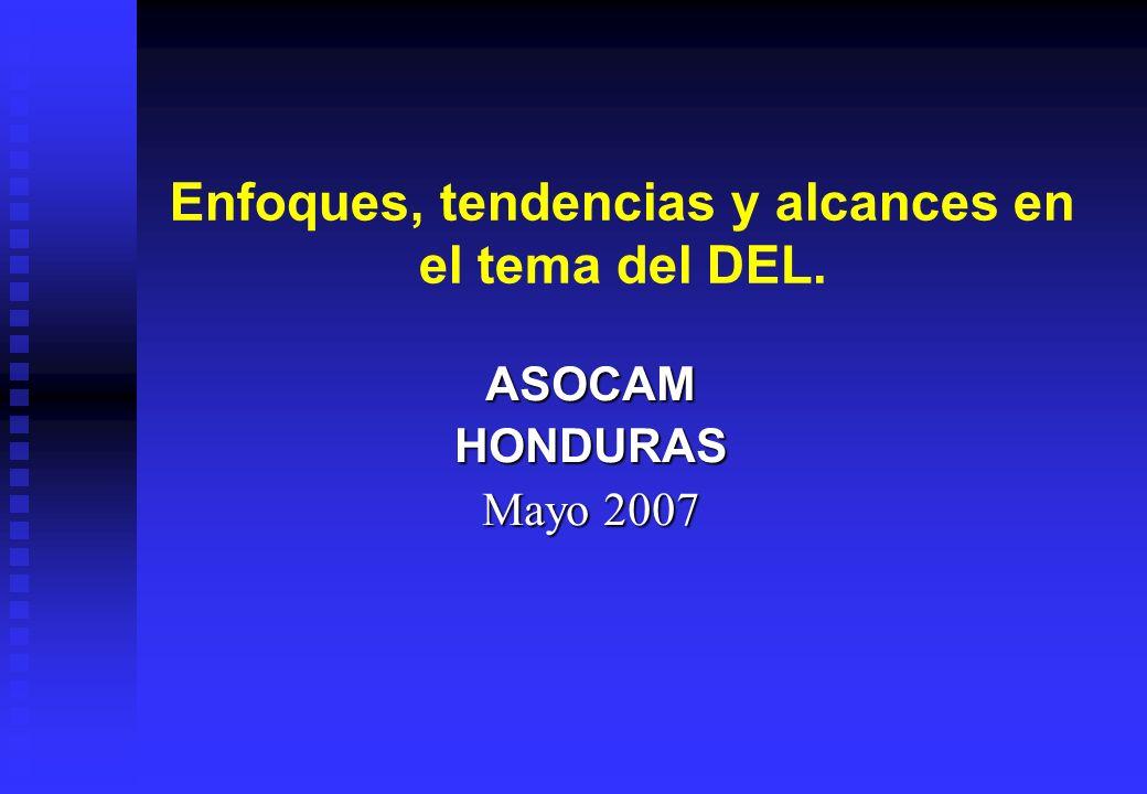 Enfoques, tendencias y alcances en el tema del DEL. ASOCAMHONDURAS Mayo 2007