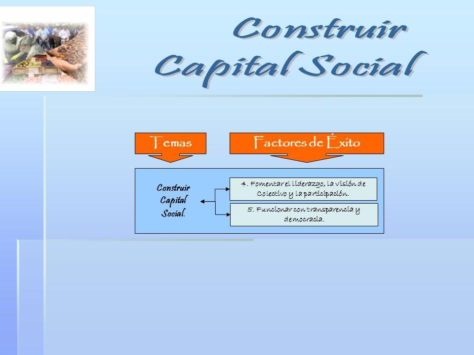 Construir Capital Social. 4. Fomentar el liderazgo, la visión de Colectivo y la participación. 5. Funcionar con transparencia y democracia. Factores d