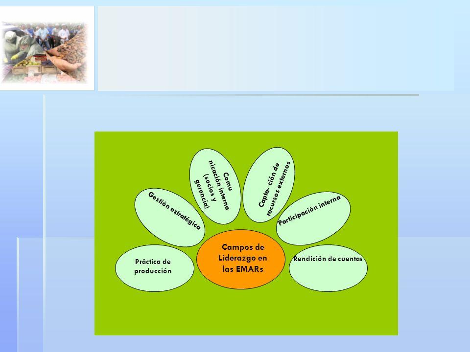 Campos de Liderazgo en las EMARs Práctica de producción Gestión estratégica Comu nicación interna (socios y gerencia) Capta- ción de recursos externos