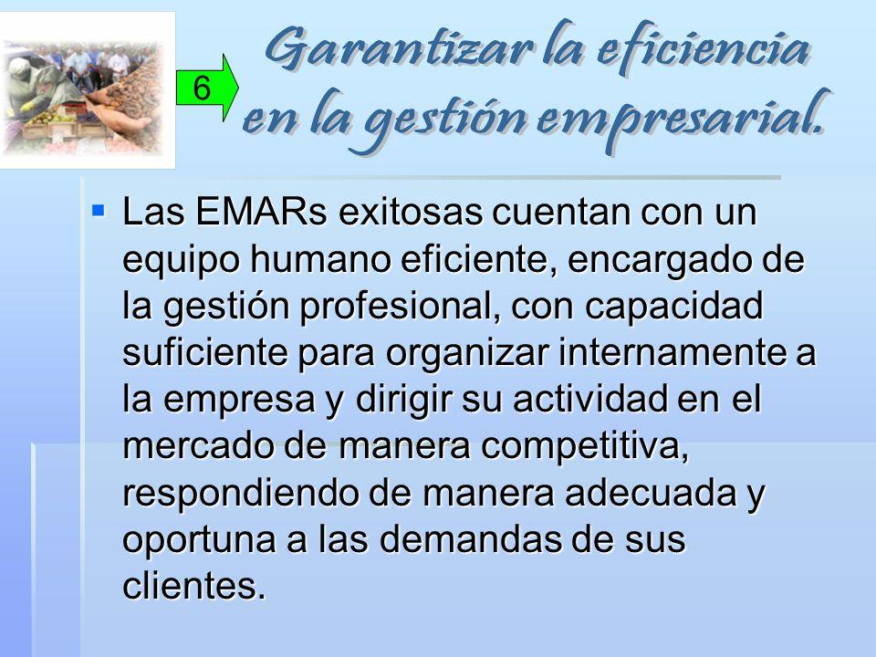 Las EMARs exitosas cuentan con un equipo humano eficiente, encargado de la gestión profesional, con capacidad suficiente para organizar internamente a