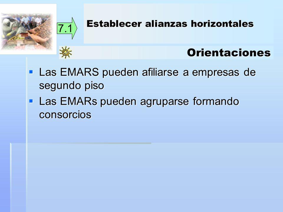 Orientaciones 7.1 Las EMARS pueden afiliarse a empresas de segundo piso Las EMARS pueden afiliarse a empresas de segundo piso Las EMARs pueden agrupar