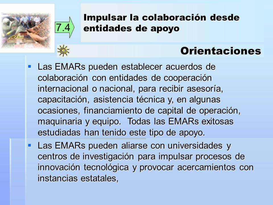 Orientaciones 7.4 Las EMARs pueden establecer acuerdos de colaboración con entidades de cooperación internacional o nacional, para recibir asesoría, c