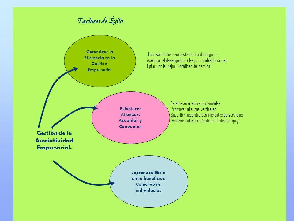 Lograr equilibrio entre beneficios Colectivos e individuales Impulsar la dirección estratégica del negocio. Asegurar el desempeño de las principales f