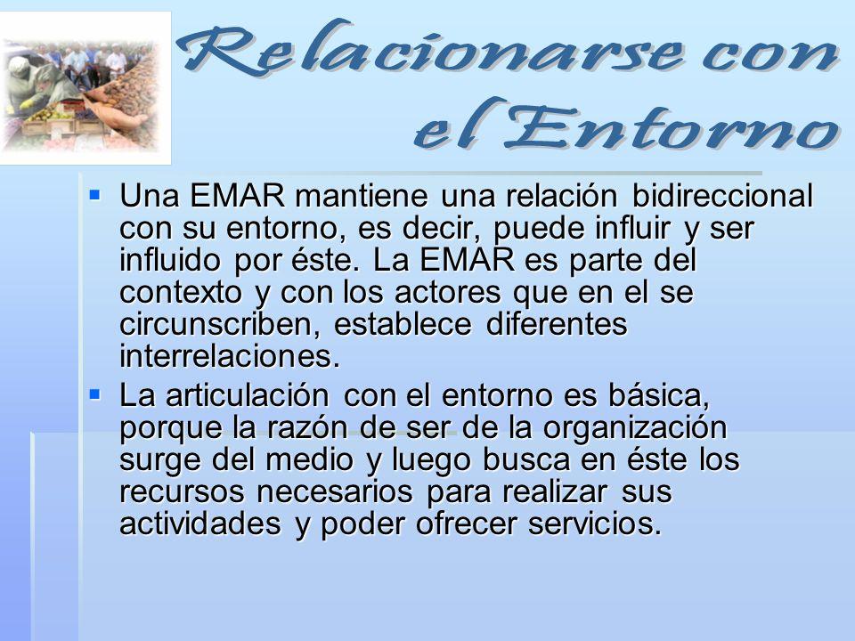 Una EMAR mantiene una relación bidireccional con su entorno, es decir, puede influir y ser influido por éste. La EMAR es parte del contexto y con los