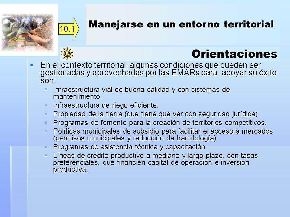 Orientaciones En el contexto territorial, algunas condiciones que pueden ser gestionadas y aprovechadas por las EMARs para apoyar su éxito son: En el