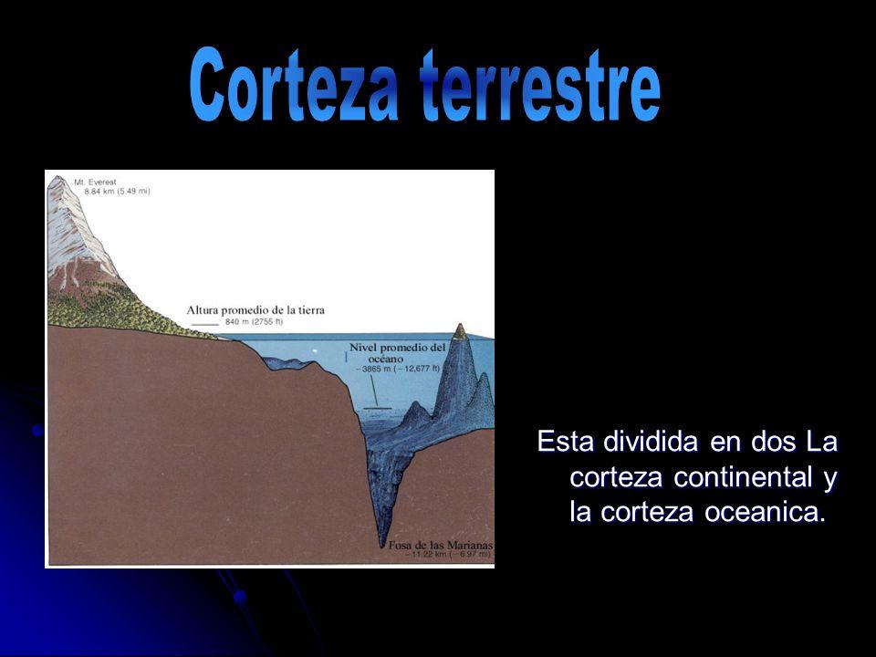 Esta dividida en dos La corteza continental y la corteza oceanica.