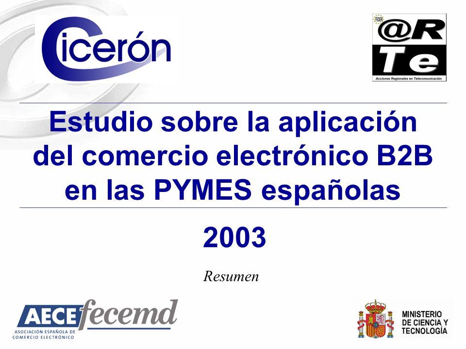 2003 Estudio sobre la aplicación del comercio electrónico B2B en las PYMES españolas Resumen