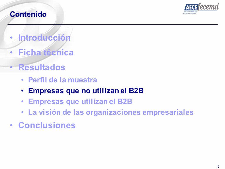 12 Contenido Introducción Ficha técnica Resultados Perfil de la muestra Empresas que no utilizan el B2B Empresas que utilizan el B2B La visión de las