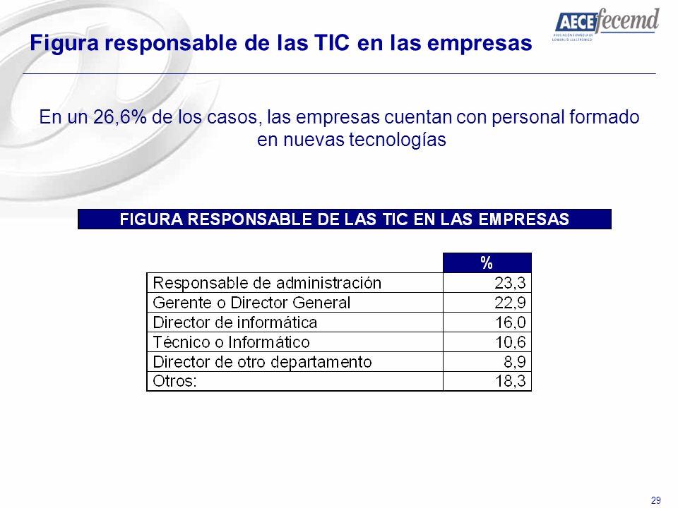 29 Figura responsable de las TIC en las empresas En un 26,6% de los casos, las empresas cuentan con personal formado en nuevas tecnologías