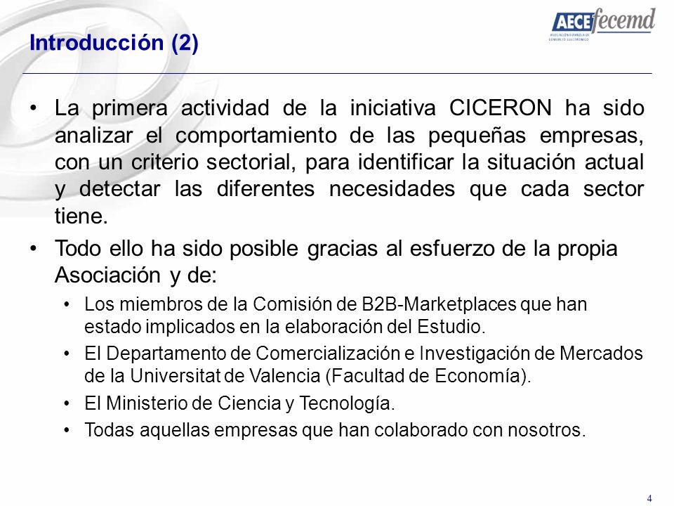 4 Introducción (2) La primera actividad de la iniciativa CICERON ha sido analizar el comportamiento de las pequeñas empresas, con un criterio sectoria