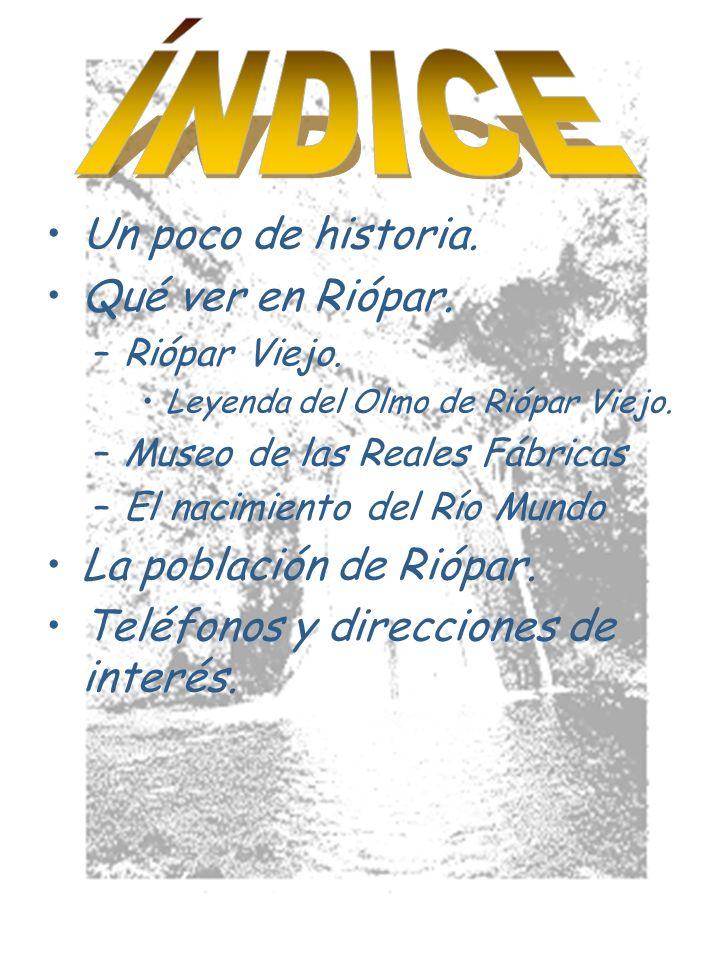 Este museo nació el 15 de junio de 2001, tras el duro trabajo de los miembros de la escuela taller del municipio, que se ocuparon de restaurar, en una primera fase, las Reales Fábricas de San Juan de Alcaraz.