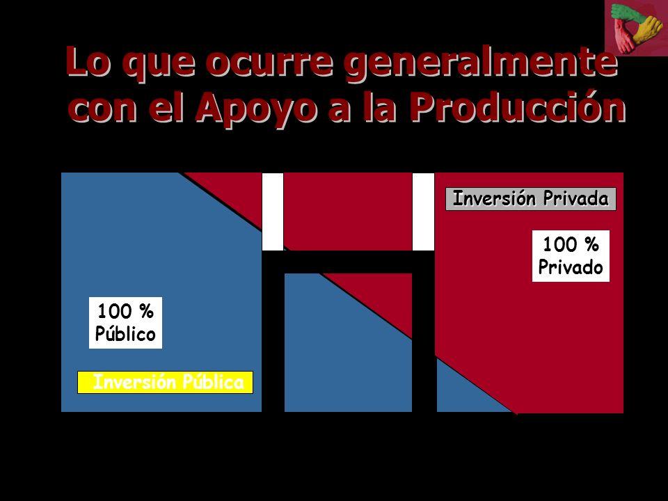 Inversión Pública Inversión Privada Inversión Privada 100 % Público 100 % Privado 12
