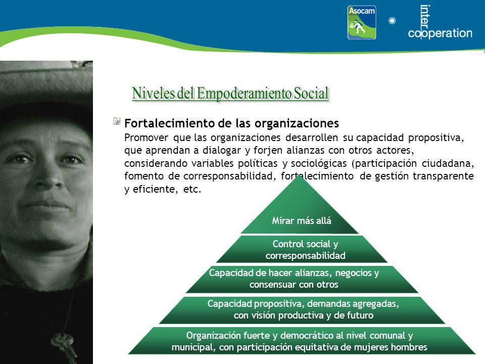 Fortalecimiento de las organizaciones Promover que las organizaciones desarrollen su capacidad propositiva, que aprendan a dialogar y forjen alianzas