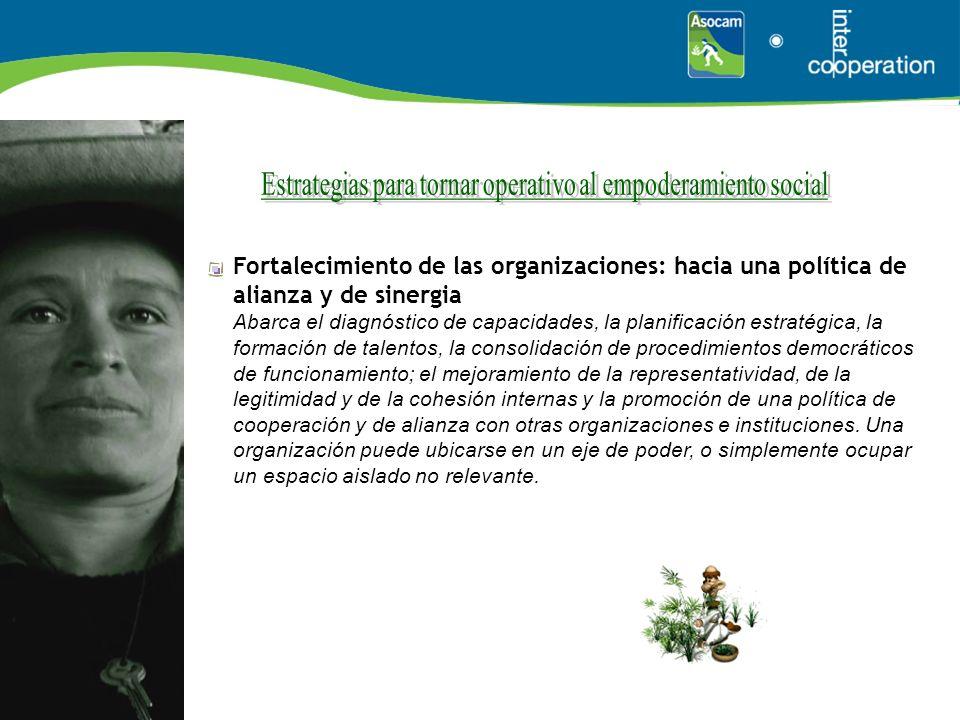 Fortalecimiento de las organizaciones: hacia una política de alianza y de sinergia Abarca el diagnóstico de capacidades, la planificación estratégica,