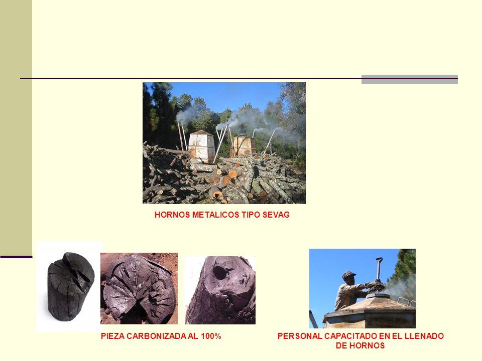 PIEZA CARBONIZADA AL 100%PERSONAL CAPACITADO EN EL LLENADO DE HORNOS HORNOS METALICOS TIPO SEVAG