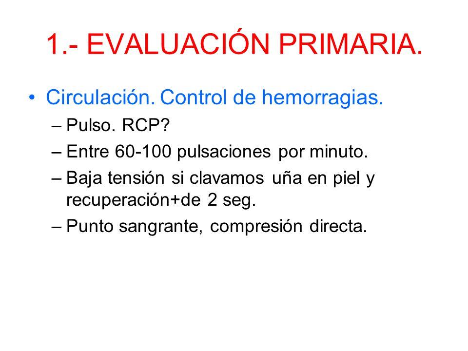1.- EVALUACION PRIMARIA. Ventilación y respiración. –Ver-oir-sentir. –Ventilación artificial (unas 18 rxm) –Buscar lesiones de la ventilación: heridas