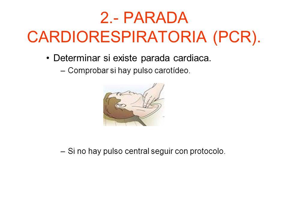 2.- PARADA CARDIORESPIRATORIA (PCR). Determinar la existencia de parada cardiorespiratoria (ver-oir-sentir). –Si el paciente respira: posición de segu