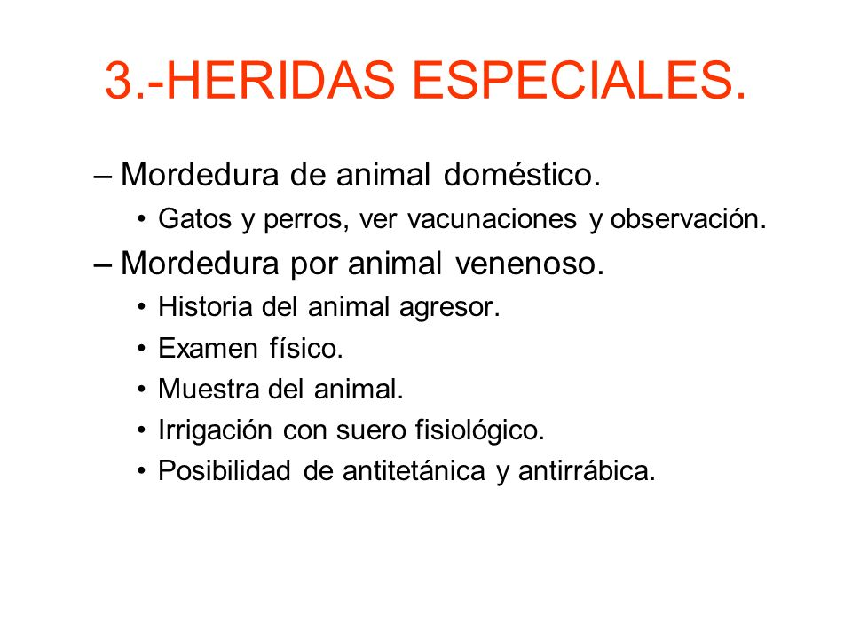 3.- HERIDAS ESPECIALES. Heridas por mordeduras. –Altísimo riesgo de infección. –Mordeduras de humanos. Son las más sucias y propensas a infección. Act