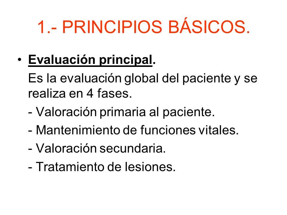 1.- PRINCIPIOS BÁSICOS.Evaluación principal.