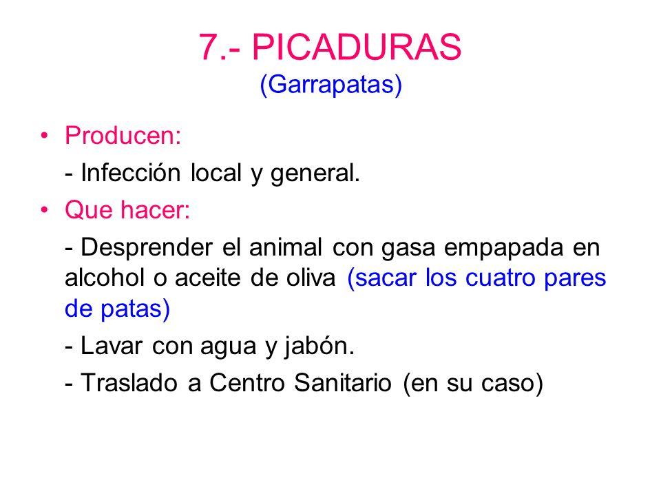 7.- PICADURAS ( Abejas y avispas) Producen: - Inflamación, enrojecimiento y picor. - Son graves en boca, garganta, varias y si existe alergia. Que hac