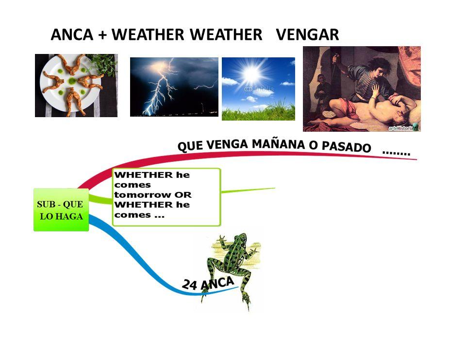 ANCA + WEATHER WEATHER VENGAR