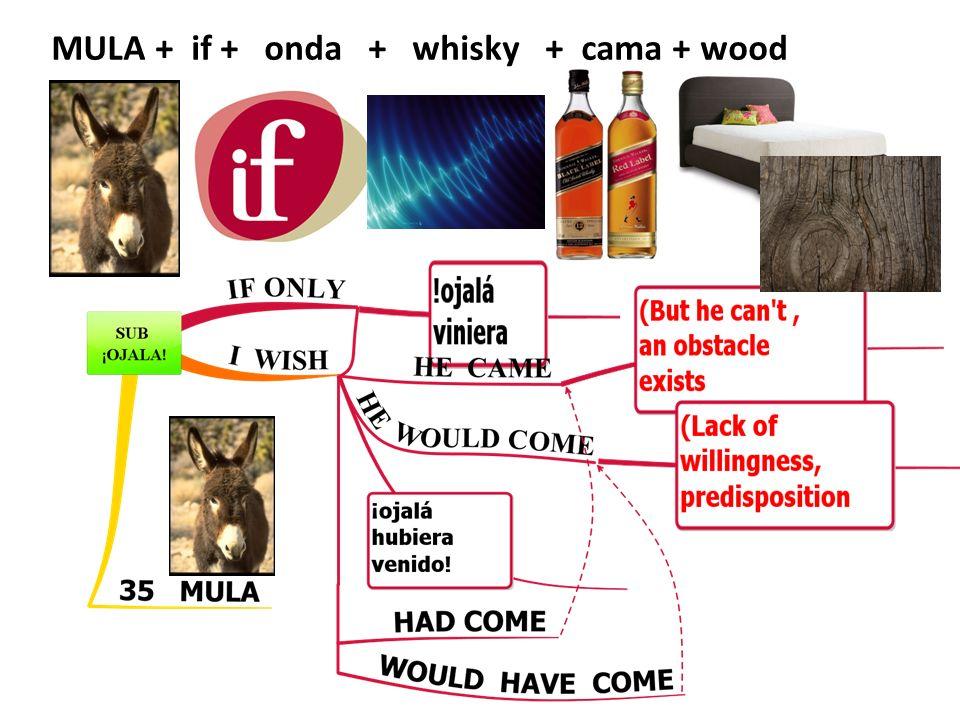 MULA + if + onda + whisky + cama + wood