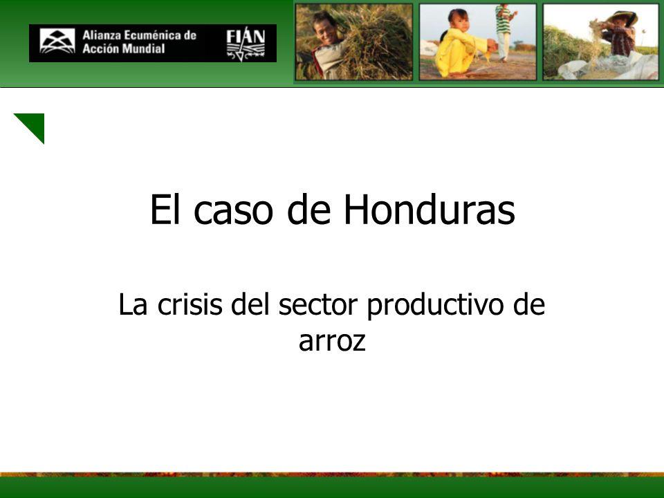 El caso de Honduras La crisis del sector productivo de arroz