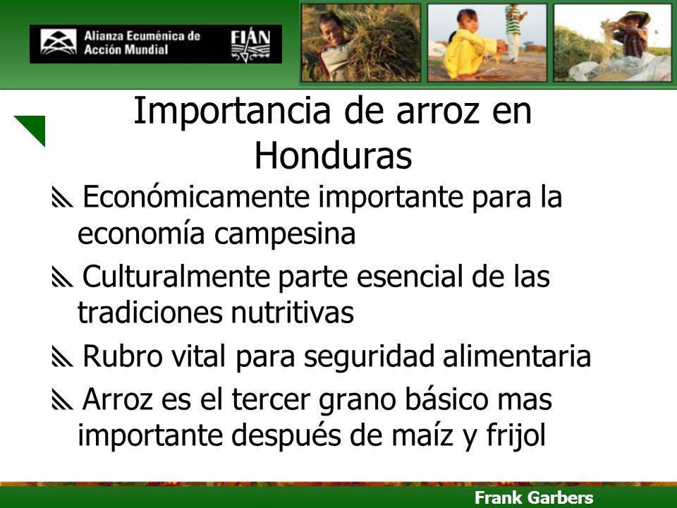Frank Garbers Importancia de arroz en Honduras Económicamente importante para la economía campesina Culturalmente parte esencial de las tradiciones nu