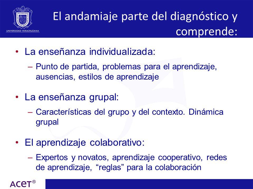 La enseñanza individualizada: –Punto de partida, problemas para el aprendizaje, ausencias, estilos de aprendizaje La enseñanza grupal: –Característica