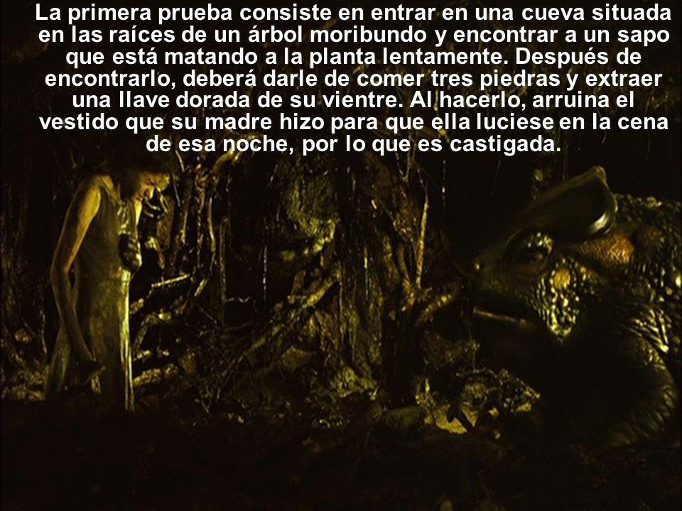 La primera prueba consiste en entrar en una cueva situada en las raíces de un árbol moribundo y encontrar a un sapo que está matando a la planta lenta