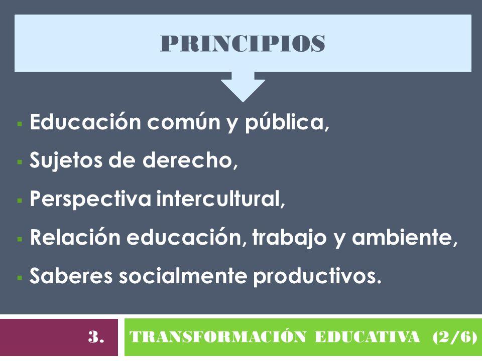 TRANSFORMACIÓN EDUCATIVA (2/6) 3. Educación común y pública, Sujetos de derecho, Perspectiva intercultural, Relación educación, trabajo y ambiente, Sa
