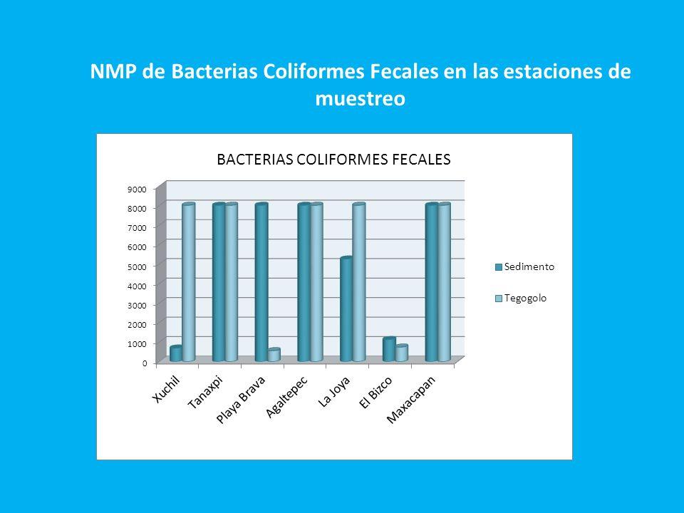NMP de Bacterias Coliformes Fecales en las estaciones de muestreo