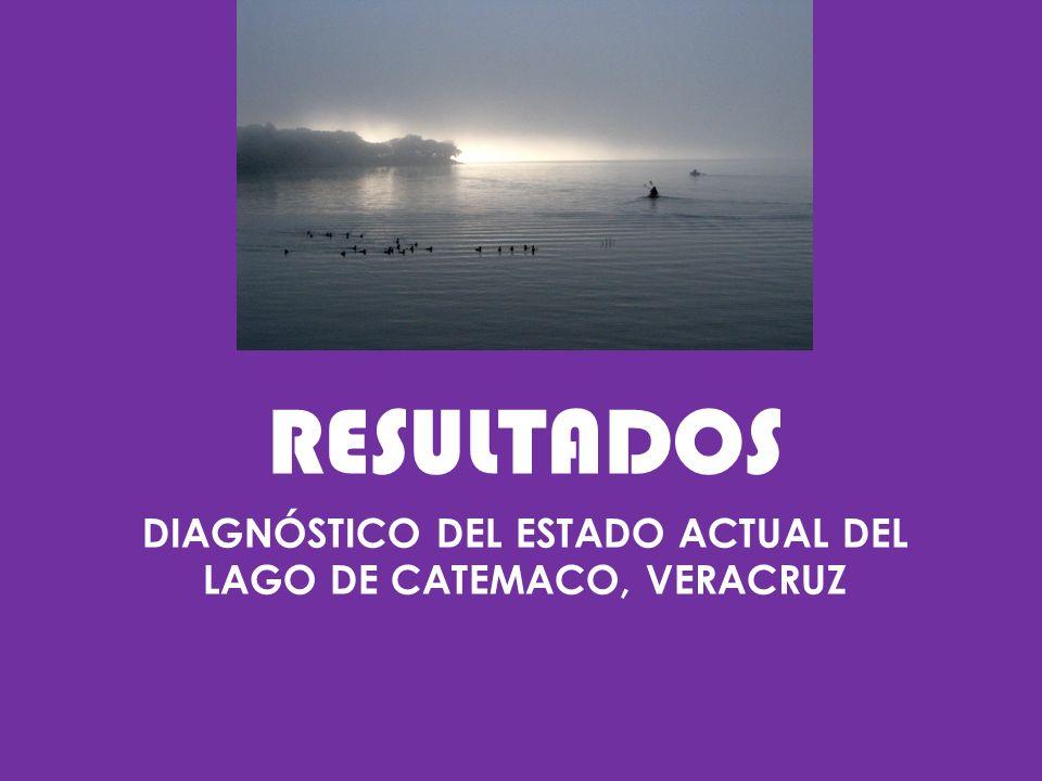 DIAGNÓSTICO DEL ESTADO ACTUAL DEL LAGO DE CATEMACO, VERACRUZ RESULTADOS
