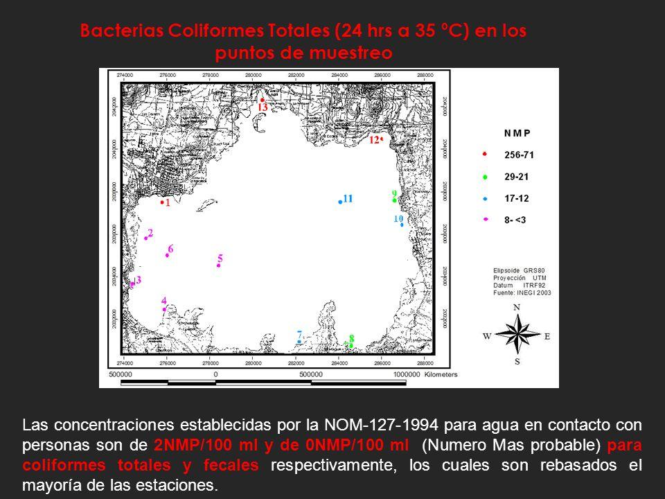 Distribución espacial de bacterias patógenas en el lago de Catemaco